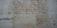 list królewski August II Mocny 3/3