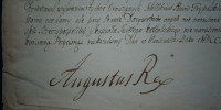 list królewski August II Mocny 2/2
