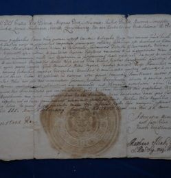 list królewski August II Mocny 1/1
