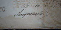 list królewski August II Mocny 3/2