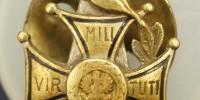 Odznaka 1 Dywizja Strzelców Wielkopolskich, 14 Dywizja Piechoty